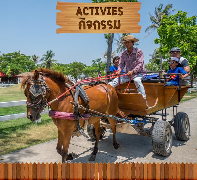 activities01home